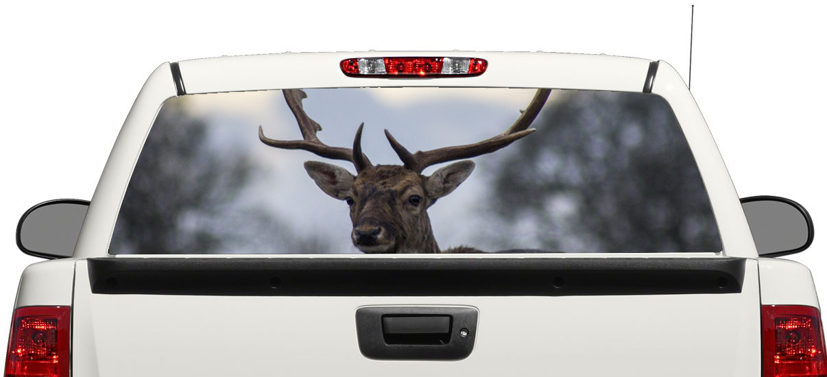 Amazon Com Let N Loose Elk Hunting Automotive Window Decal Automotive