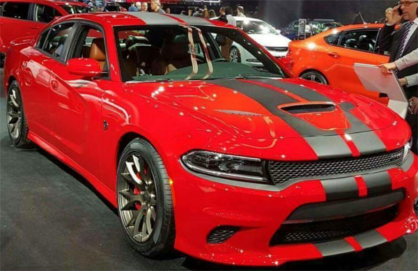 2015 & Up Dodge Charger 18 piece  SRT / HELLCAT Style Rally Stripe Decal Kit