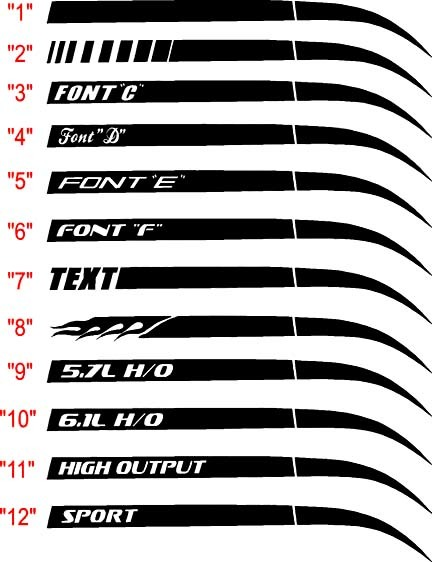 2006-2010 Charger Stinger Q.P. Streifen-Kits