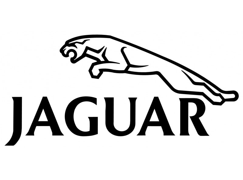JAGUAR DECAL 2031 Self adhesive vinyl Sticker Decal