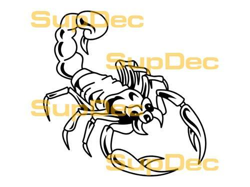 Scorpion Vinyl Art Wall  Window Bathroom Sticker Decal  #14