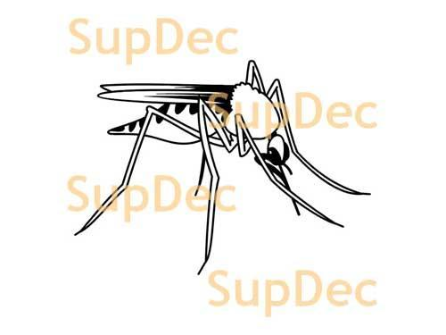 Gnat mosquito Vinyl Art Wall  Window Bathroom Sticker Decal #2