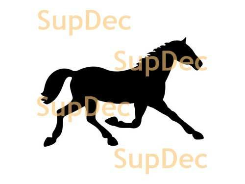 Horse Vinyl Art Wall  Window Bathroom Sticker Decal #3