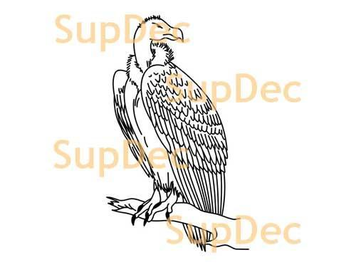Eagle Vinyl Art Wall  Window Bathroom Sticker Decal removable #2