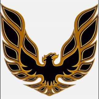 Golden Eagle Hood Decal 32in x 32in
