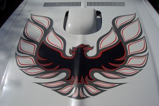 Pontiac Firebird Trans Am Bird Hood Decal Sticker 3 Any Color laminated