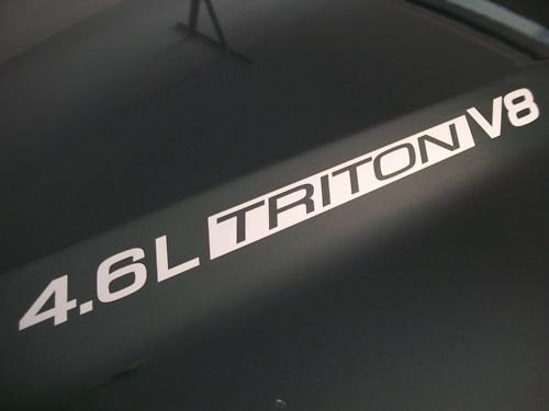 4,6 l Triton V8 Ford F150 Motorhaubenaufkleber FX4 99 00 01 02 03 04 05 06 07 08 09 2010