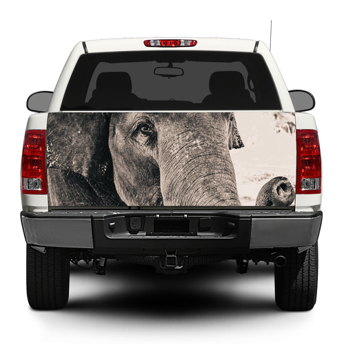 Elephant Wild animal Africa Decal Sticker Wrap Pick-up Truck SUV Car