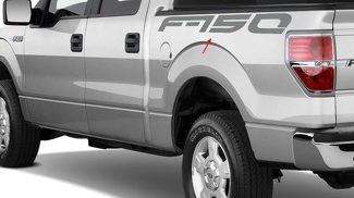 LETTERING DECAL STICKER EMBLEM LOGO VINYL F150 RAPTOR FOR FORD