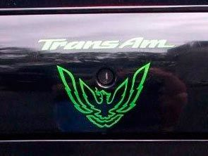 Bird decal & text fits trunk lock area Firebird Trans Am WS6