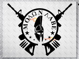 Spartan Helmet or PUNISHER MOLON LABE gun cross hood side vinyl decal sticker wrangler jeep