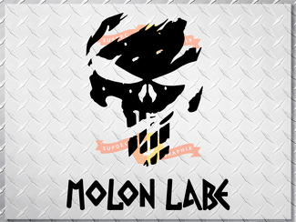 PUNISHER skull MOLON LABE US body side vinyl decal sticker jeep wrangler 1 decal