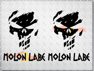 PUNISHER skull MOLON LABE US body side vinyl decal sticker jeep wrangler any car