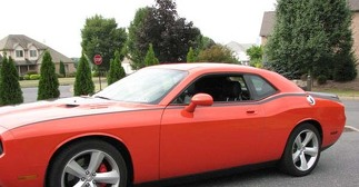 2008 & Up Dodge Challenger Pinstripe  Bodyline Side Stripe Kit