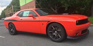 2008 & Up Dodge Challenger Devil Tail Lower Bodyline Side Stripe Kit