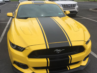 2015 & Up Ford Mustang Super Snake Style Streifen-Kits