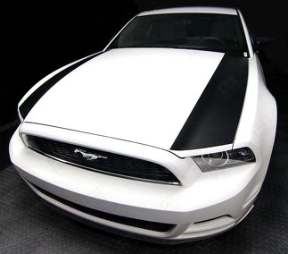 FORD MUSTANG 2013-2020 HOOD SIDE ACCENT STRIPES