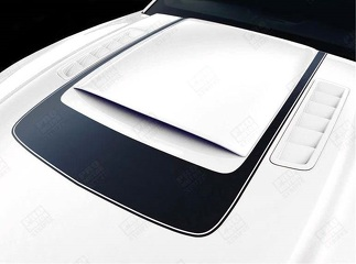 FORD MUSTANG 2013-2014 ACCENT DECAL STRIPE AROUND HOOD SCOOP RSH8