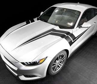 FORD MUSTANG 2015-2017 FENDER HASH LIGHTNING SIDE STRIPES