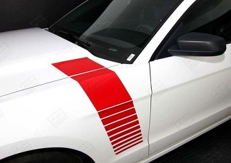 FORD MUSTANG 2005-2014 FENDER SIDE STROBE STRIPES