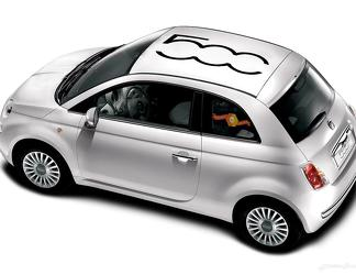 Fiat 500 Vinyl Racing 500 Logo Roof Stripe Decal Sticker Vinyl Decal