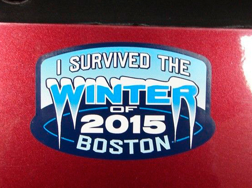 Par JEEP Boston Blizzard Emblem